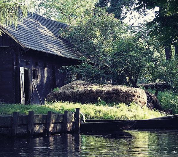 Touren und Aktivitäten im Spreewald
