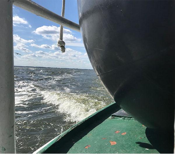 Schiffstouren auf dem Stettiner Haff